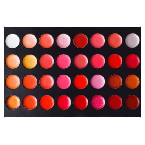 18. Professional Lip Palette